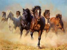 """Canvas Print Animals Horses Oil painting Picture Printed on canvas 16""""x24"""" P088"""