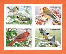 US Songbirds in Snow stamps, a block of 4 stamps MNH 2016