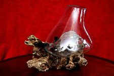 Hand blown glass vase on root wood