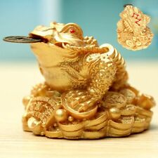 Feng Shui Coin LUCKY Fortune Oriental Chinese Frog Golden Toad Gift Home Deco