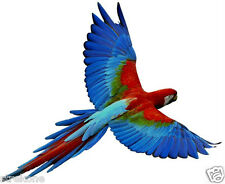 GREEN WINGED MACAW South American Colored Parrot Flying Bird -Window Cling Decal