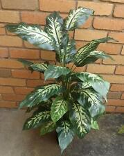 3ft DELUXE DIEFFENBACHIA  PLANT * SILK* ARTIFICIAL  * NEW * POTTED