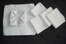 10 Stk Gästehandtücher Handtücher Handtuch weiß NEU Waschlappen Reinigungstücher