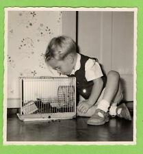 Kind Junge Hamster Hamsterkäfig Laufrad 1958