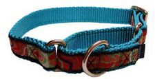 Martingale Collar with Ribbon Overlay