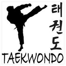 TAEKWONDO  MARTIAL ARTS GUIDE, LEARN KICKS DEFENCE ATTACK on Plain DVD-R