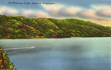OLD POSTCARD  - USA - T19 Watauga Lake, Eastern Tennessee - Linen