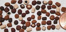 20 Pralinen Miniatur Lebensmittel Süßigkeiten 1:6 1:12 Puppenstube Puppenhaus
