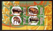 Nashorn Nilpferd Animals Wildtiere Congo 2010 KB Sheet