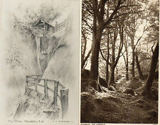 Isle of Wight  vintage pair photochrome shanklin landslip & the chine unposted