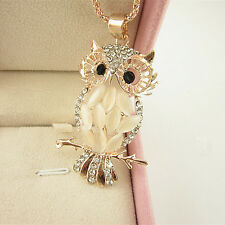 Women Charm Jewelry Crystal Rhinestone Owl Pendant Necklace Long Sweater Chain