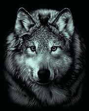Kratzbild  Kratzbilder Wolf Wolfsportrait Tiermotiv Silber 20cm x 25,5 cm
