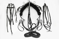 Mini Tiedown Trotting Harness - Black