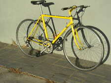 """FLAT BAR  12 SPEED 700C WHEELS 21"""" FRAME LEVER SHIFTERS"""