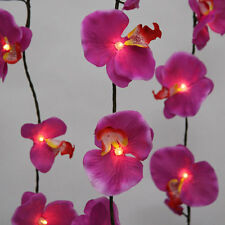Purple Orchid mains Powered 20 LED Light Chain