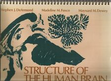 STRUCTURE OF THE HUMAN BRAIN Photographic Atlas by DeArmond - Fusco & Dewey 1989