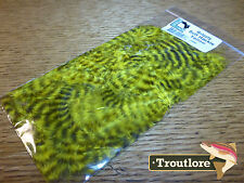 YELLOW GRIZZLY SOFT HACKLE HARELINE DUBBIN - NEW FLY TYING FEATHERS