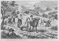 Kočevje, Gottschee, Slowenien, Frauen, Holzstich 1880
