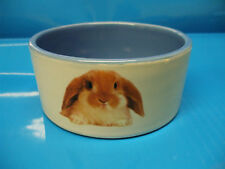 Rabbit food and water bowl