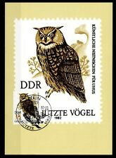 Eulen. Uhu. Maximumkarte. DDR 1982