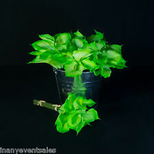12 x REALISTIC Green Calla Lily Bunches – Artificial Flowers | WHOLESALE