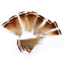 50pcs Natural Pheasant Feathers 6-8cm for Jewelry Craft Fly Tying Millinery