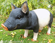 Black and Pink Striped Extra Large Pig - Farm Animal - Statue - Garden Ornament
