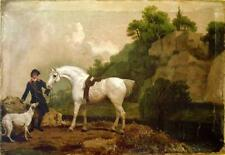 Vintage Art Oil  Painting Print On Canvas Stubbs Horse Dog Classic Ready to Hang