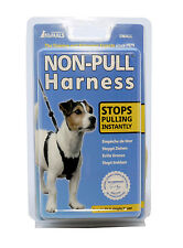 Non Pull Harness for Dogs - Small Size - Company of Animals