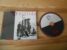 CD Pop TRIFFIDS - Treeless Plan (18 Song + Interview) Promo DOMINO