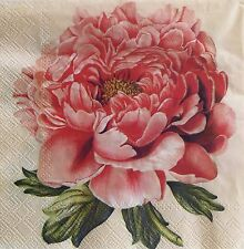 NEW! 20 paper Napkin Decoupage Scrapbooking Craft Collection Shabby Flower Peony