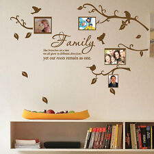 Family Tree Bird Photo Frame Nursery Art Wall Stickers Quotes Wall Decals 42