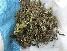 1kg Löwenzahnblätter Löwenzahn getrocknet Blätter Premium Qualität