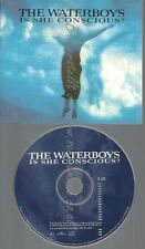 CD--PROMO--THE WATERBOYS--IS SHE CONSCIOUS--1TR