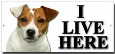 JACK RUSSELL TERRIER,I LIVE HERE METAL SIGN,DOG BREEDS,SECURITY SIGN.