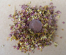 1:12 Scale Scatter Of Autumn Garden Leaves Dolls House Miniature Accessory