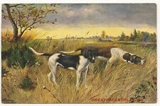 Dogs. Art Study. Printed Postcard produced in Germany