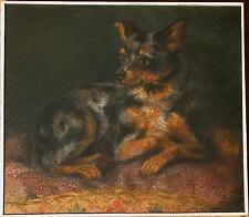 Paula VON WASSERBURGER (1865-45) Zwergpinscher Nr. 2.