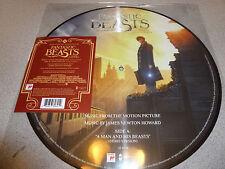 "OST - Fantastic Beasts - 12"" PICTURE Vinyl // Neu ////////// James Newton Howard"
