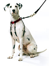 Sporn Halter Dog Walking Training Harness - Stop your dog pulling ! X Large