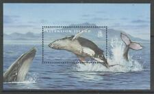 ASCENSION SGMS1033 2009 WHALES & DOLPHINS MNH