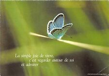 BF39475 france  papillon butterfly animal animaux