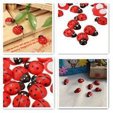 100 Pcs Beetle Ladybug Fairy Garden Ornament Figurine Miniature Dollhouse Decor