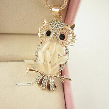 Hot Women Rose Gold Plated Opal Crystal Owl Pendant Necklace Long Sweater Chain