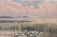 NORFOLK :  HICKLING BROAD-The Water Lily-PARSONS-NORMAN-JARROLDS