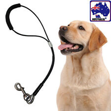 53cm Pet Dog Leash Lead Collar Steel Wire Cable Coated Chain Harness PDOCH 4698