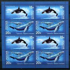 RUSSLAND RUSSIA 2012 Wale Whales Kleinbogen #1788-89 ** KW €17