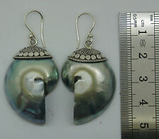 Rare Grey Nautilus Shell Designer Dangle Earrings 925 Sterling Silver NEW