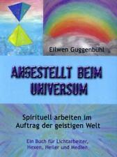 Angestellt beim Universum von Eilwen Guggenbühl (2010, Taschenbuch)