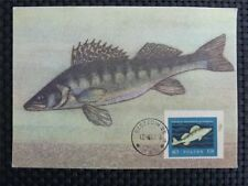 POLEN MK 1967 FISH ANIMALS TIERE FISCHE MAXIMUMKARTE MAXIMUM CARD MC CM c963